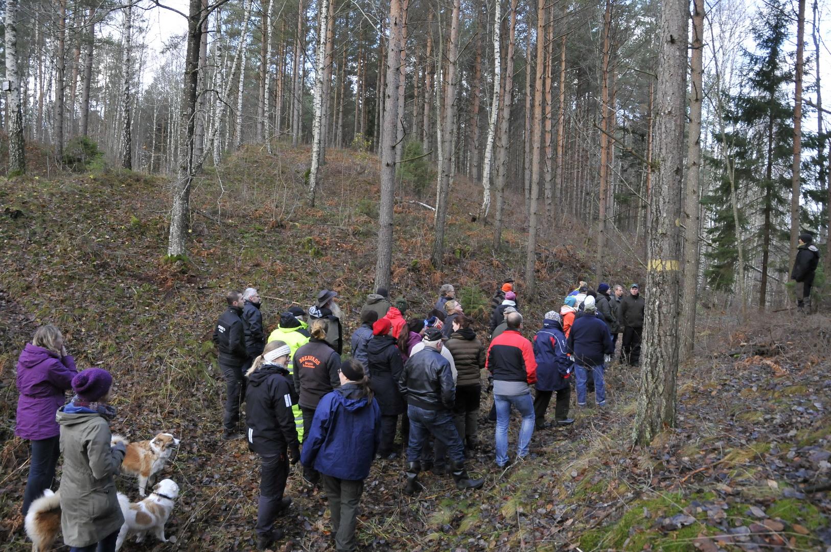 En av grupperna på skogsdagen i Korsberga
